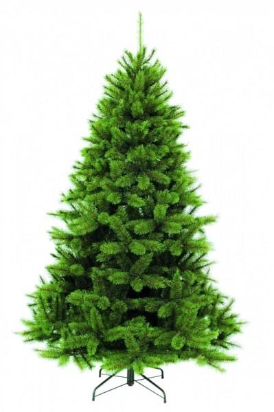 Пихта Triumph Tree Прелестная 230 см