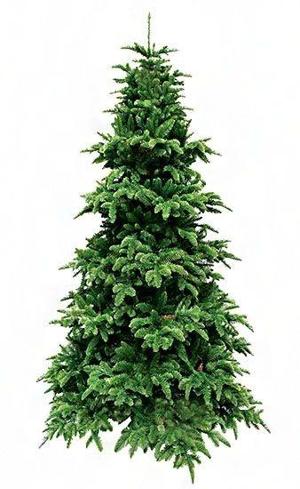 Ель Triumph Tree Нормандия стройная 215 см