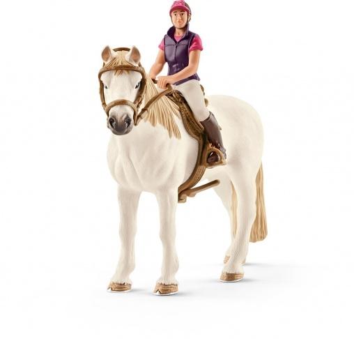Конкуристка с лошадью