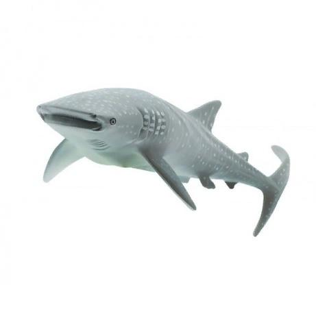 Китовая акула XL