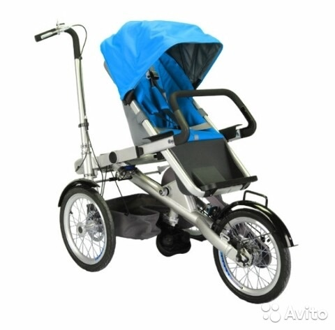 Beisier (цвет голубой)